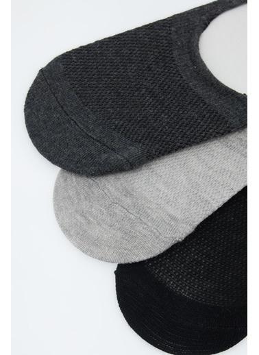 DeFacto Basic 3'lü Babet Çorabı Gri